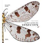 La-face-cachee-des-insectes